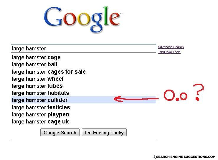 Hampster_collider