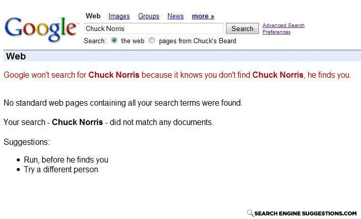CHUCK_NORRIS_SEARCH.JPG